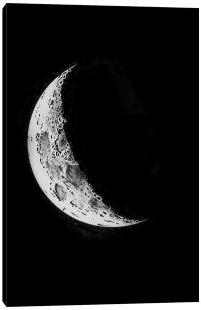 Phases Of The Moon I Canvas Art Print