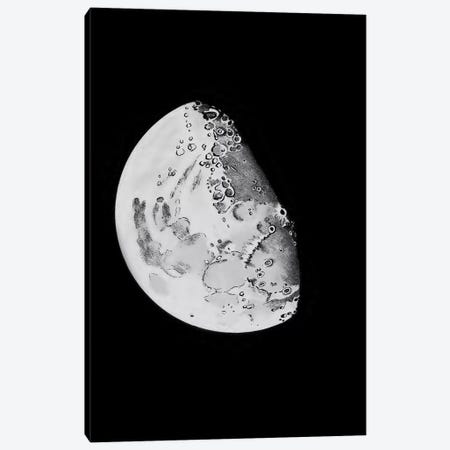 Phases Of The Moon IV Canvas Print #PAT104} by PatentPrintStore Canvas Wall Art