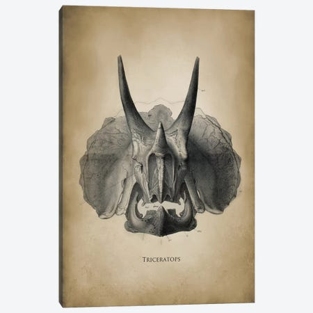 Triceratops Canvas Print #PAT137} by PatentPrintStore Canvas Art Print