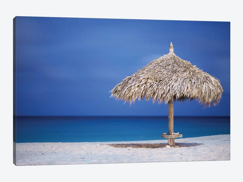 Aruba by Mark Paulda 1-piece Canvas Art