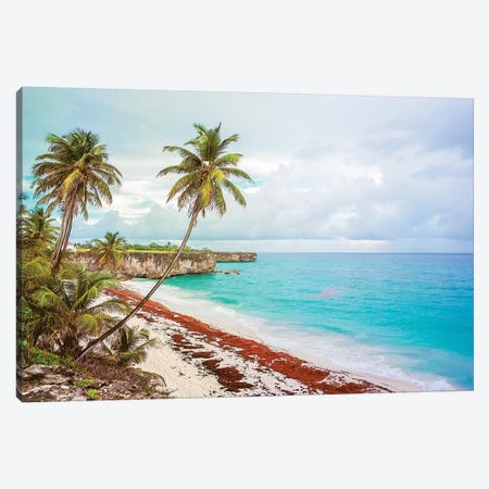 Bottom Bay Barbados Canvas Print #PAU136} by Mark Paulda Canvas Artwork