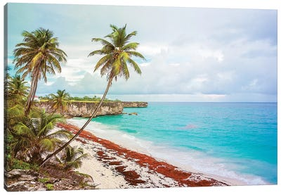 Bottom Bay Barbados Canvas Art Print