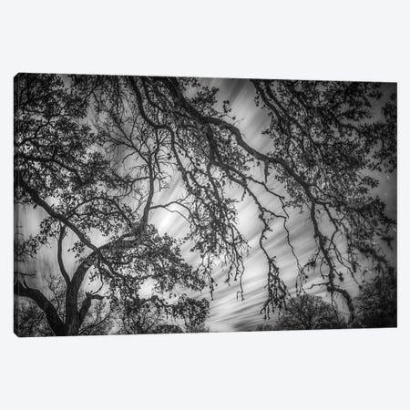 Clouds At Midnight Canvas Print #PAU156} by Mark Paulda Canvas Art
