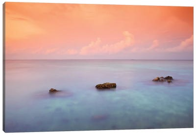 Maldives CXLIX Canvas Art Print