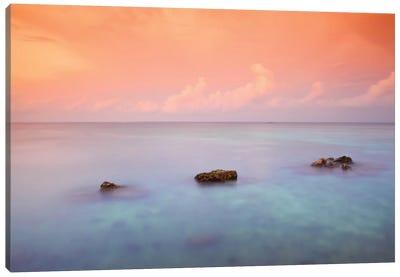 Maldives CXLIX Canvas Art Print