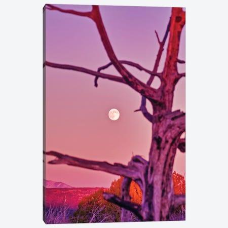 Colorado Moonrise Canvas Print #PAU208} by Mark Paulda Canvas Art Print