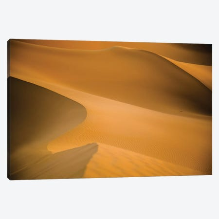 Sahara Desert XXV Canvas Print #PAU20} by Mark Paulda Art Print