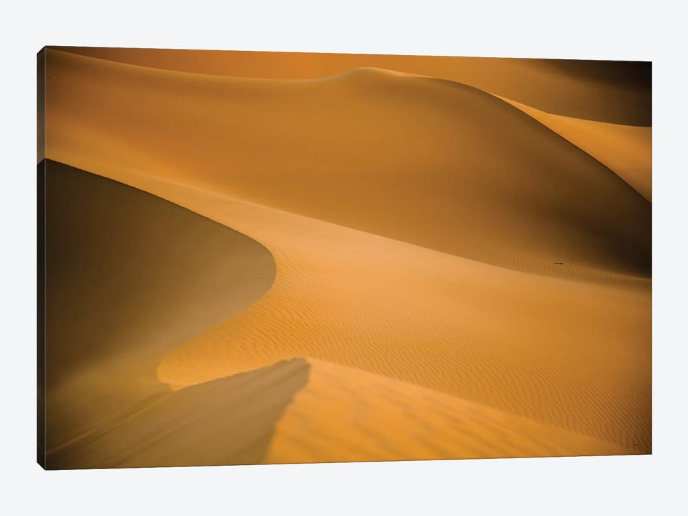 Sahara Desert XXV by Mark Paulda 1-piece Canvas Print