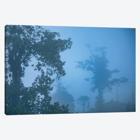 Blue Hour In The Andes Canvas Print #PAU219} by Mark Paulda Canvas Wall Art