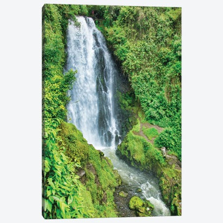 Jungle Waterfall Canvas Print #PAU223} by Mark Paulda Canvas Art Print