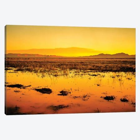 Western Sunset Canvas Print #PAU225} by Mark Paulda Canvas Wall Art