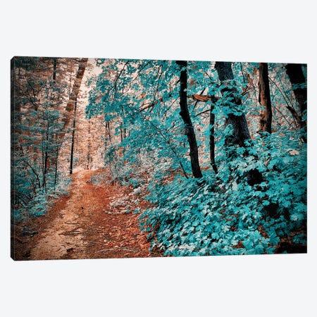Trestle Trail Canvas Print #PAU228} by Mark Paulda Art Print