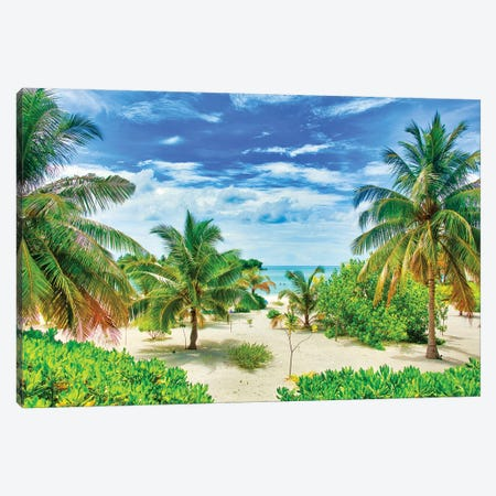 Tropical Paradise Canvas Print #PAU236} by Mark Paulda Art Print