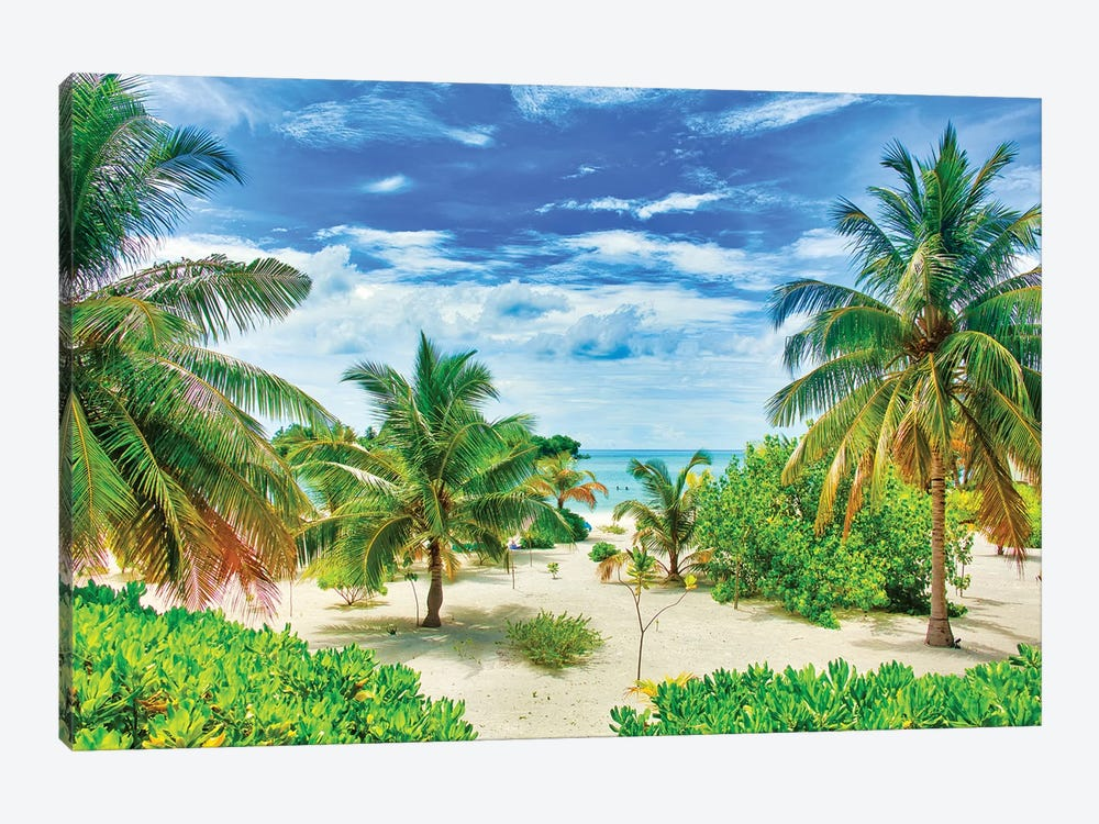 Tropical Paradise by Mark Paulda 1-piece Canvas Wall Art