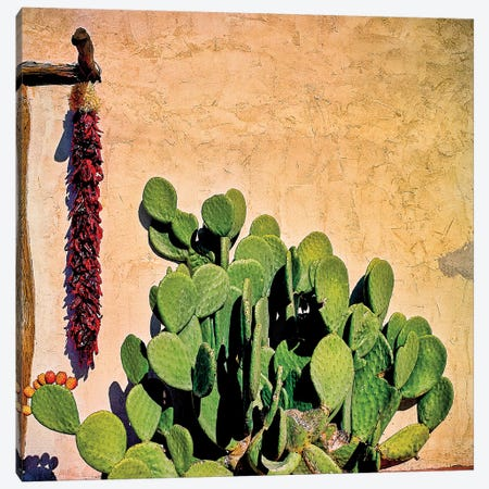 Prickly Pear and Chillis Canvas Print #PAU245} by Mark Paulda Canvas Art