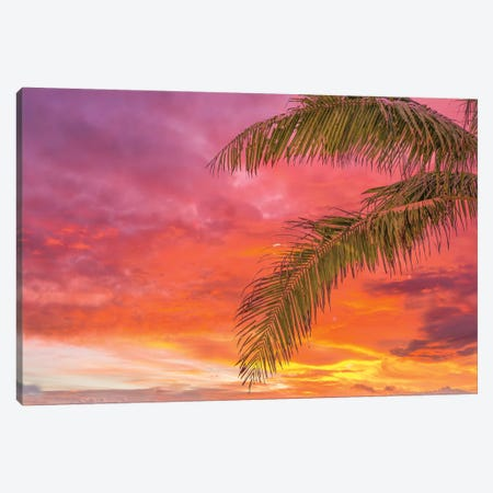 Tropical Flavours Canvas Print #PAU286} by Mark Paulda Canvas Art