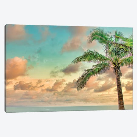 Palm Calm Canvas Print #PAU287} by Mark Paulda Canvas Wall Art