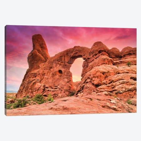 Desert Pink Sunset Canvas Print #PAU297} by Mark Paulda Canvas Print