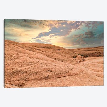 Desert Glow Canvas Print #PAU304} by Mark Paulda Canvas Print