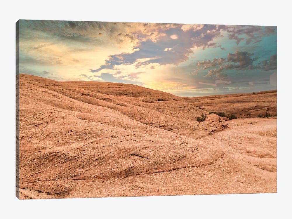 Desert Glow by Mark Paulda 1-piece Canvas Artwork