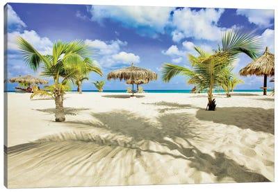 Palm Shadows Canvas Art Print