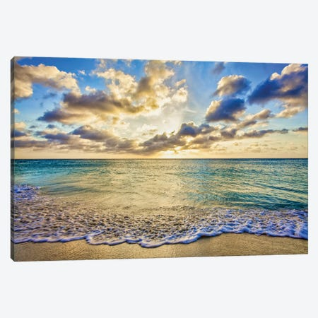 Golden Shimmer Canvas Print #PAU329} by Mark Paulda Canvas Wall Art