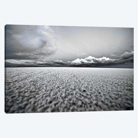 White Sands National Park IV Canvas Print #PAU34} by Mark Paulda Art Print