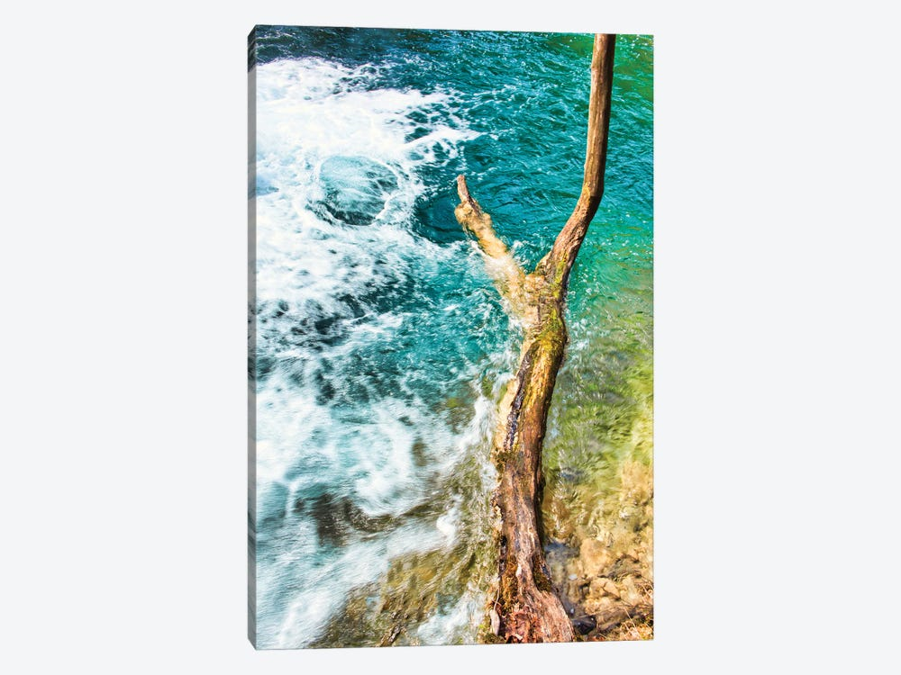 Standing Firm by Mark Paulda 1-piece Canvas Print