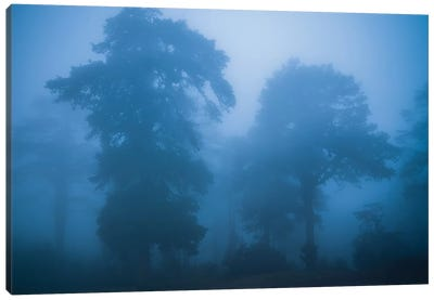 Bhutan Fog In The Himalayas I Canvas Art Print