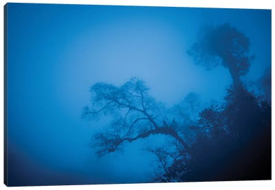 Bhutan Fog In The Himalayas II Canvas Art Print