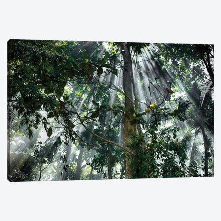 Bali Sun Rays Canvas Print #PAU41} by Mark Paulda Canvas Art Print