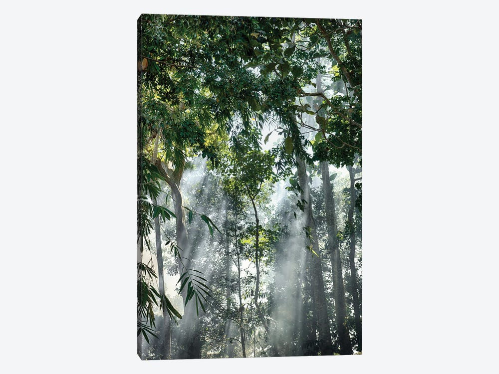 Bali Sunset Rays In The Mist by Mark Paulda 1-piece Art Print