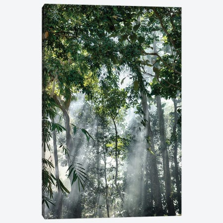 Bali Sunset Rays In The Mist Canvas Print #PAU42} by Mark Paulda Canvas Print