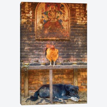 Bhaktapur Nepal Ganesh Hen And Sleeping Dog 3-Piece Canvas #PAU64} by Mark Paulda Canvas Wall Art
