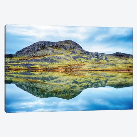 Snaefellsnesvegur, Iceland CU VII Canvas Print #PAU76} by Mark Paulda Canvas Print