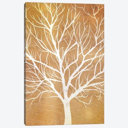 Autumn Tree Canvas Print #PAV559} by Martina Pavlova Art Print