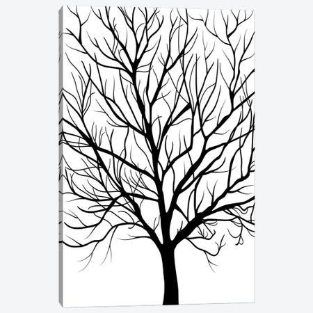 Winter Tree Canvas Print #PAV667} by Martina Pavlova Canvas Artwork