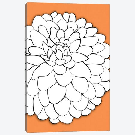 Chrysanthemum Orange Canvas Print #PAV669} by Martina Pavlova Canvas Art Print