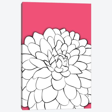 Chrysanthemum Pink Canvas Print #PAV670} by Martina Pavlova Canvas Artwork