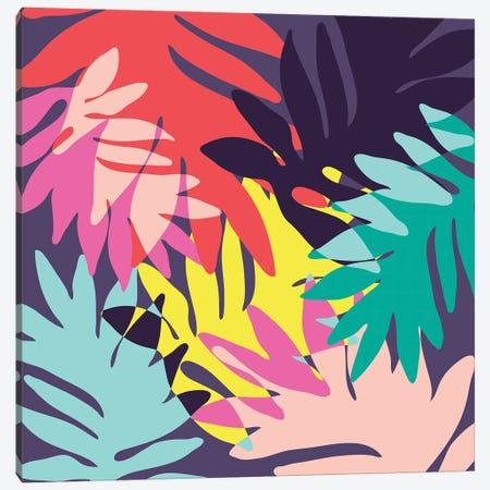 Tropics III Canvas Print #PAZ153} by Susana Paz Canvas Art Print