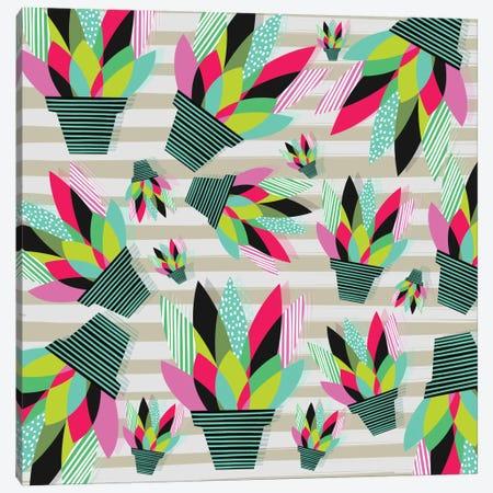 Joyful Plants II Canvas Print #PAZ49} by Susana Paz Canvas Wall Art
