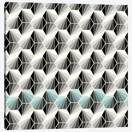 Natural Geometry I Canvas Print #PAZ64} by Susana Paz Canvas Art Print