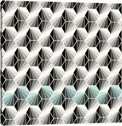 Natural Geometry I Canvas Art Print