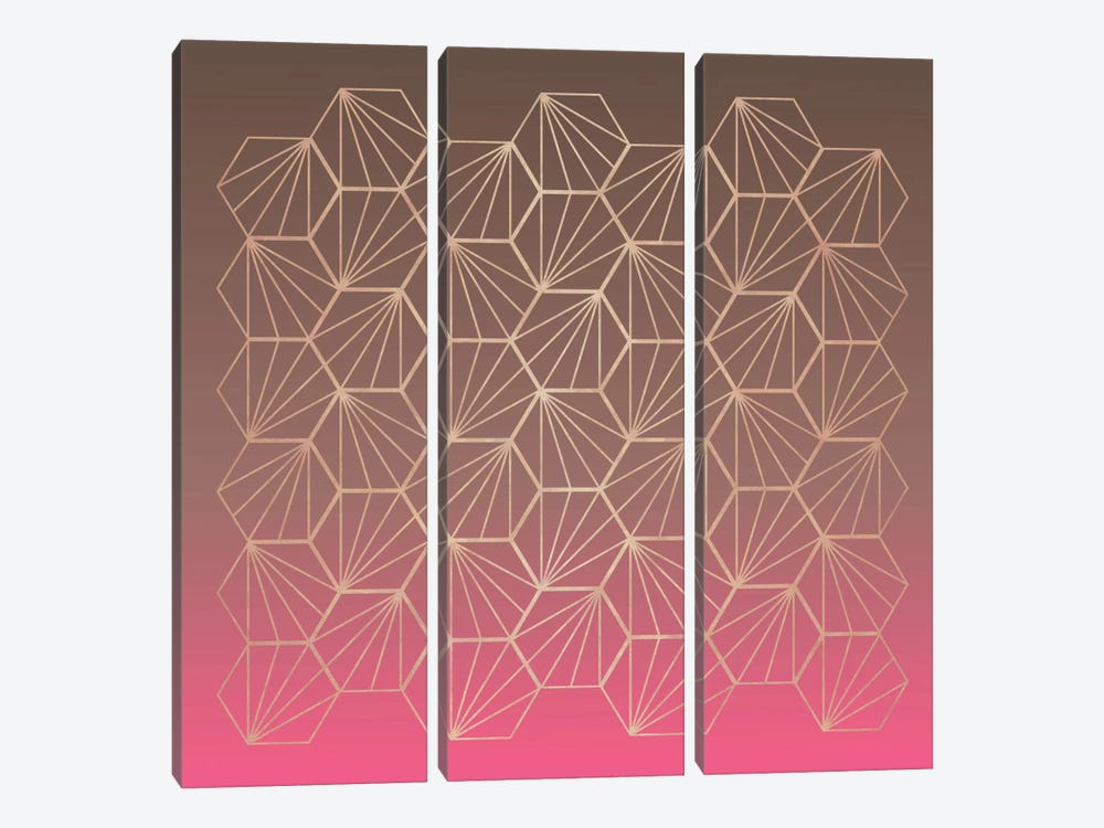 Natural Geometry II by Susana Paz 3-piece Canvas Artwork