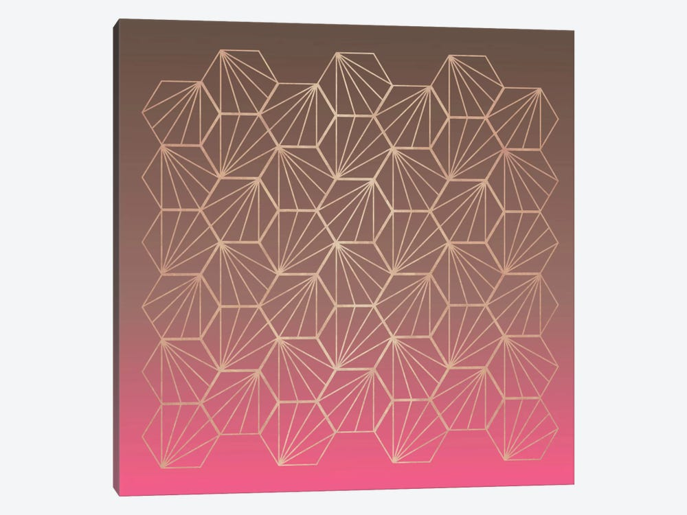 Natural Geometry II by Susana Paz 1-piece Canvas Wall Art