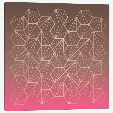 Natural Geometry II Canvas Print #PAZ65} by Susana Paz Canvas Print
