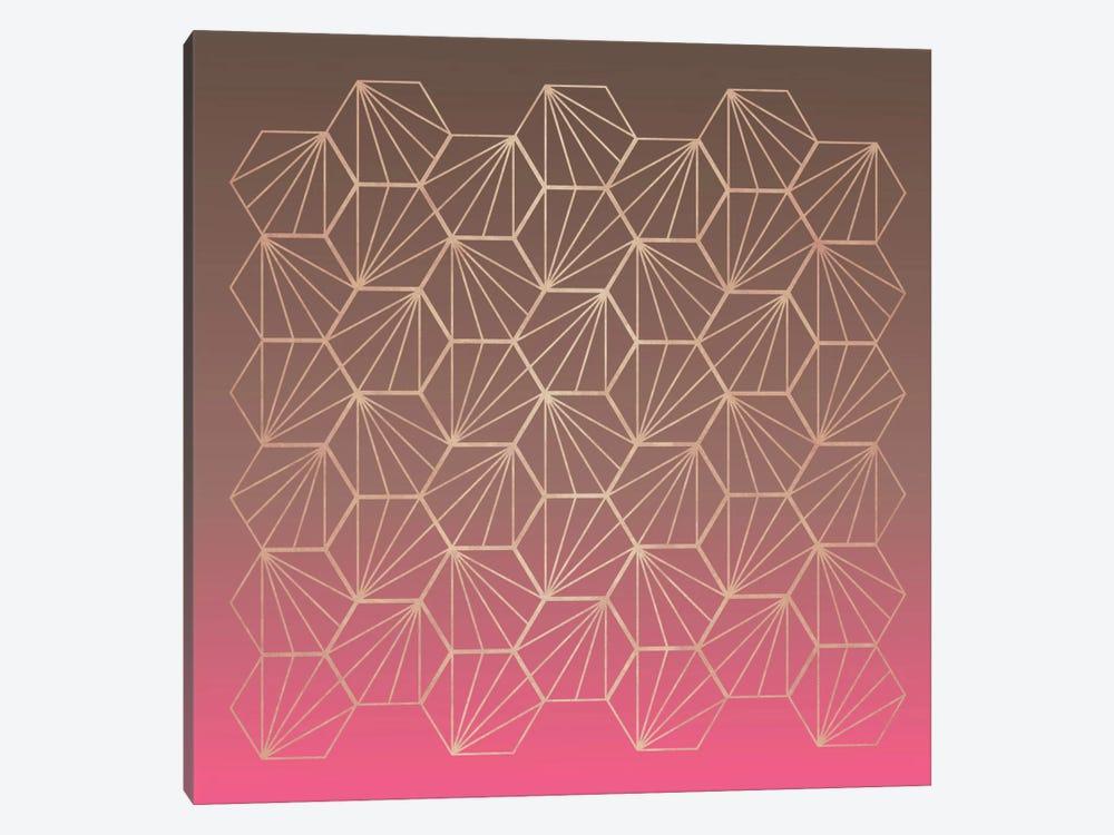 Natural Geometry II by Susana Paz 1-piece Canvas Wall Art