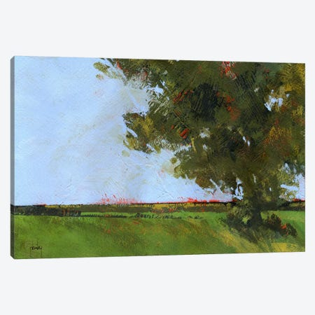 Autumn Oak And Empty Fields Canvas Print #PBA10} by Paul Bailey Canvas Wall Art