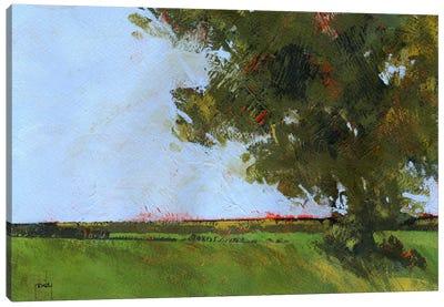 Autumn Oak And Empty Fields Canvas Art Print