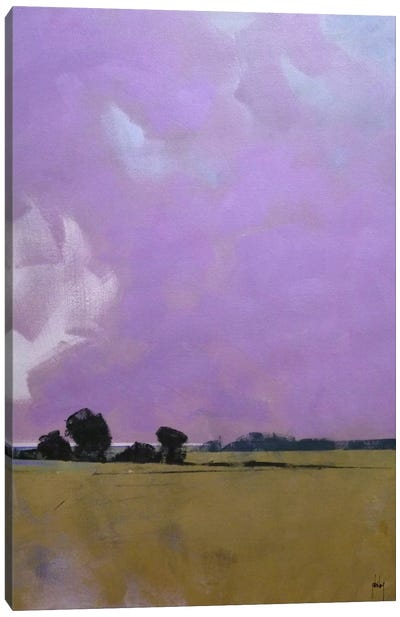 Over The Fields To The Distant Sea Canvas Art Print